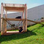 A área externa é muito importante para o bem-estar dos chimpanzés