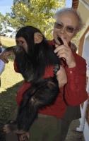 Peter singer com chimp suzi