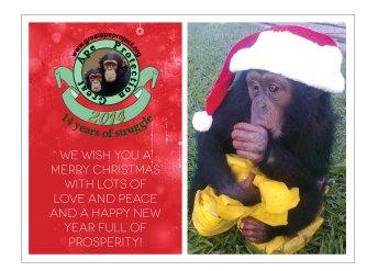 Cartão-de-Natal-GAP-2013-En