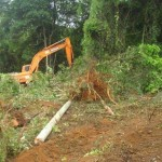 desmatamentobunjiro3-150x150