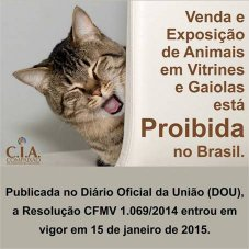 Venda e Exposição de Animais Proibidas