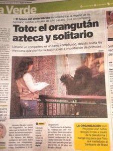 Camapna Toto GAP Mexico (1)