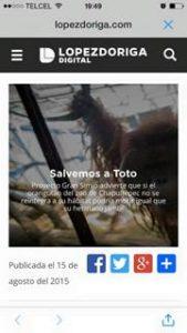 Camapna Toto GAP Mexico (3)