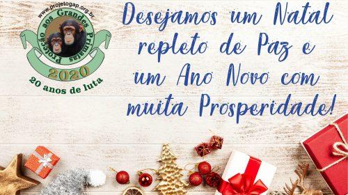Feliz Natal E Um 2020 Com Muito Sucesso Gap Project